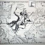 L'oroscopo 2009 dei Gemelli