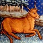 Toro: l'oroscopo del 2010